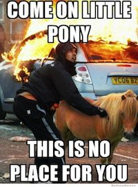 Come on little pony this is no place for you.